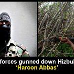 Hizbul terrorist Haroon Abbas killed