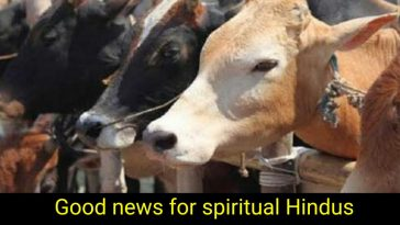 anti-cow slaughter law