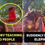 Baba Ramdev falls off Elephant while performing Yoga, video goes viral