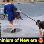 woman walks husband like dog