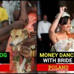 Very strange Wedding traditions in India and across the world, catch details
