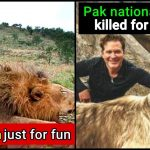 These 2 Men killed big animals and triggered massive outrage, we're really angry
