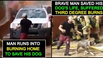 Man risks his life and jumps into fire to rescue his Dog; watch the Viral Video