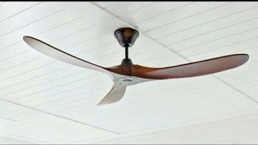 fans for your room