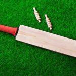 Rise of fantasy cricket