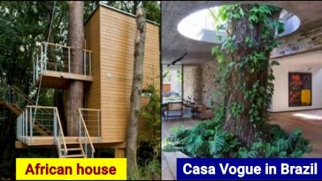 10 Times Humans adapted Nature in their lifestyle creatively